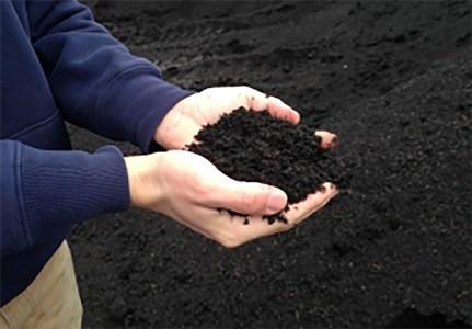 blueribbon_soil