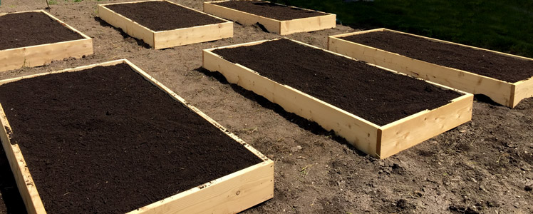 Compost Topsoil Mix Raised Bed